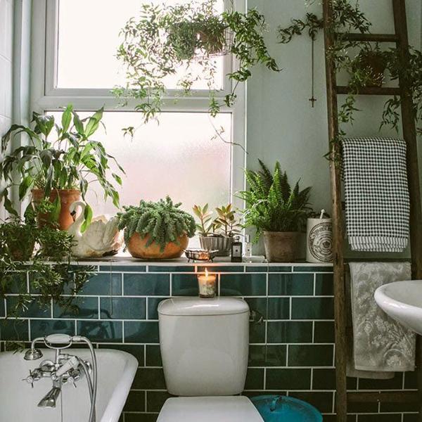 พื้นที่เล็ก ๆ ในห้องน้ำของคุณก็สามารถตกแต่ง ปลูกต้นไม้เพื่อให้ห้องน้ำของคุณเป็นสีเขียวได้สบาย ๆ  รูปที่ 2
