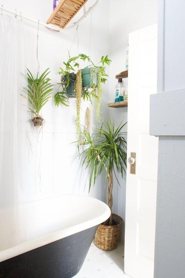 พื้นที่เล็ก ๆ ในห้องน้ำของคุณก็สามารถตกแต่ง ปลูกต้นไม้เพื่อให้ห้องน้ำของคุณเป็นสีเขียวได้สบาย ๆ  รูปที่ 3