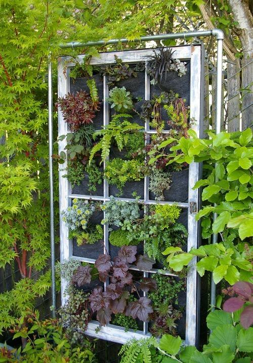 เพิ่มความคลาสสิกให้สวนสวยด้วยบานประตูไม้เก่า รูปที่ 10