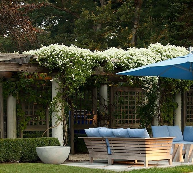15 ไอเดียซุ้มระแนงไม้เพิ่มความสวยงามให้สวนในบ้าน รูปที่ 8