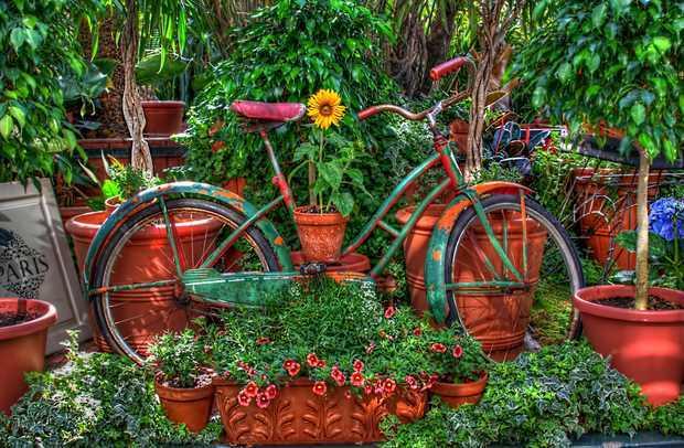 แปลงร่างจักรยานเก่าให้เป็นที่ปลูกดอกไม้สุดชิค รูปที่ 6