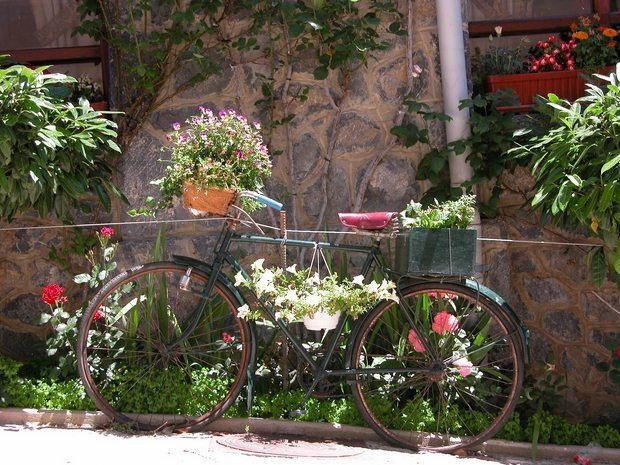 แปลงร่างจักรยานเก่าให้เป็นที่ปลูกดอกไม้สุดชิค รูปที่ 7