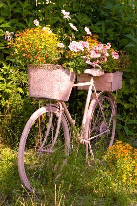 แปลงร่างจักรยานเก่าให้เป็นที่ปลูกดอกไม้สุดชิค รูปที่ 9