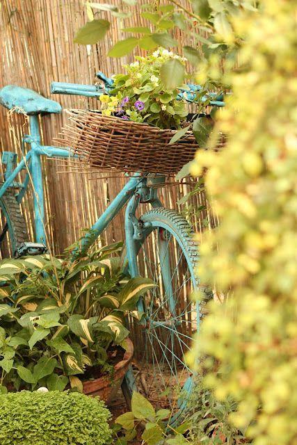 แปลงร่างจักรยานเก่าให้เป็นที่ปลูกดอกไม้สุดชิค รูปที่ 11