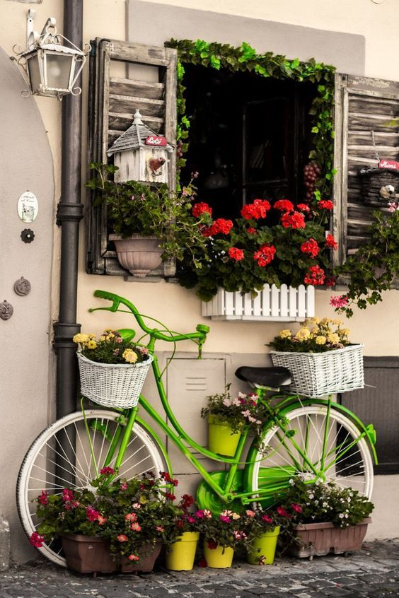 แปลงร่างจักรยานเก่าให้เป็นที่ปลูกดอกไม้สุดชิค รูปที่ 14