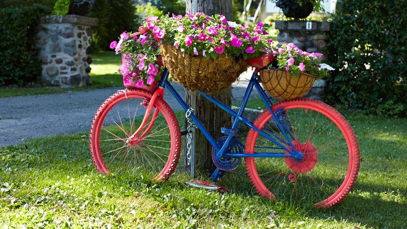 แปลงร่างจักรยานเก่าให้เป็นที่ปลูกดอกไม้สุดชิค รูปที่ 19