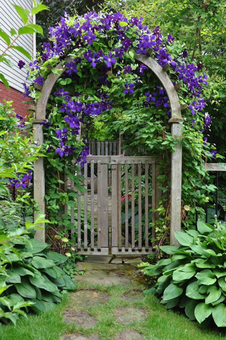 ชวนแต่งสวนสไตล์วินเทจด้วยซุ้มประตู รูปที่ 5
