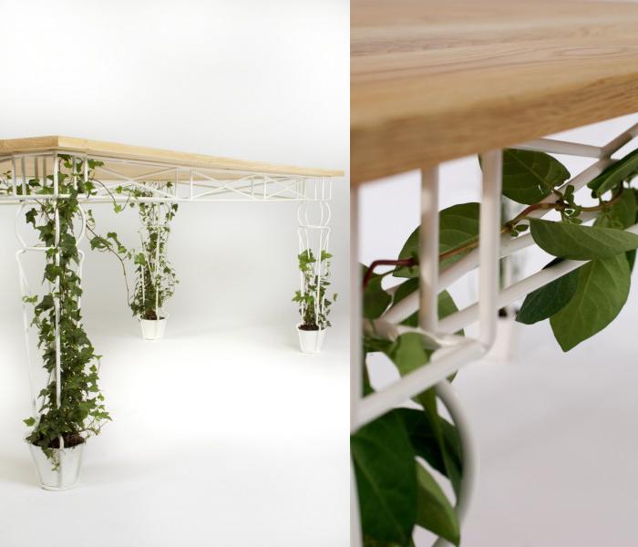 การนำต้นไม้ที่ชอบและเฟอร์นิเจอร์ที่ใช่มาตกแต่งห้องนั่งเล่นให้ปัง รูปที่ 5