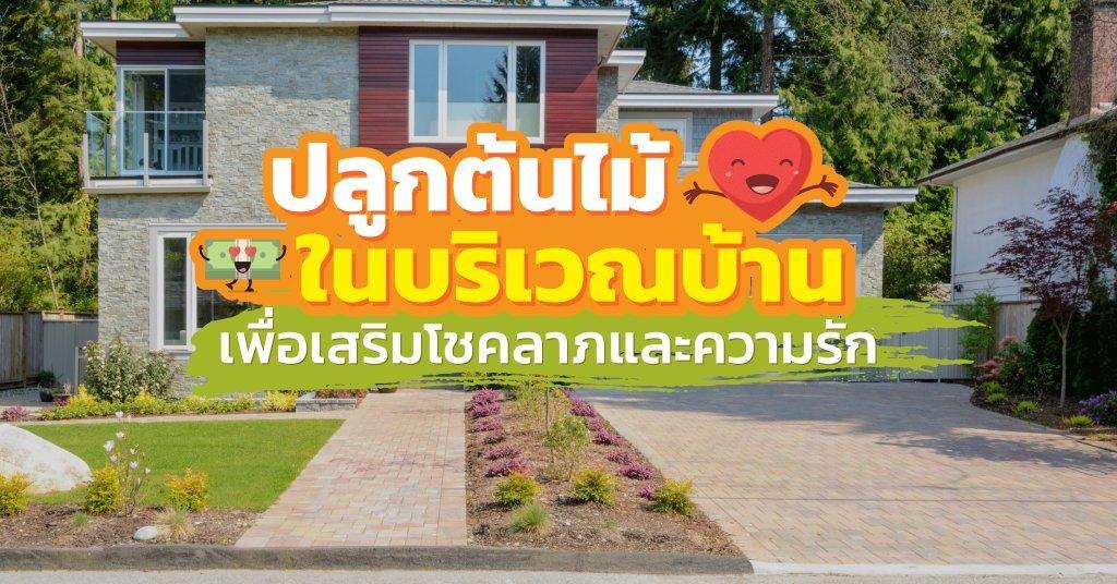 ฮวงจุ้ยการปลูกต้นไม้ในบริเวณบ้านเพื่อเสริมโชคลาภและความรัก