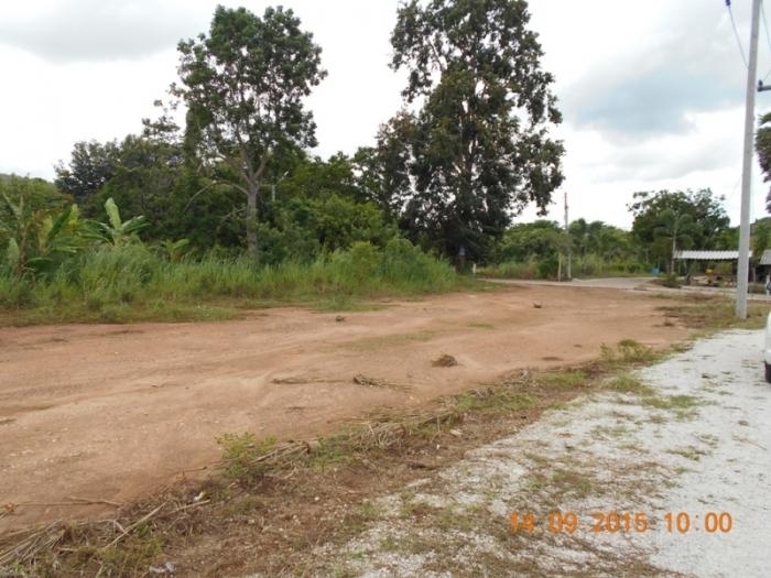 ที่ดินเปล่า 3 ไร่ 50 ตารางวา ราคา ตารางวาละ 5,500 บาท มีไฟฟ้า มีถนน