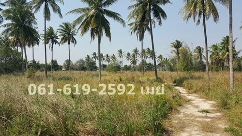 ขายที่ดิน 22 ไร่ 1 งาน 12 ตรว. ซอย หมู่บ้านเขาน้อย หัวหิน จังหวัดประจวบคีรีขันธ์ 061-619-2592 เมย์