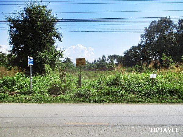 00016 ให้เช่าที่ดินเชียงใหม่ ขายที่ดินปูคา ใกล้บ่อสร้าง ต้นเปา สันกำแพง เชียงใหม่/Land for Sale-RENT, Near Borsang, Sankampheang, Chiangmai, THAILAND.