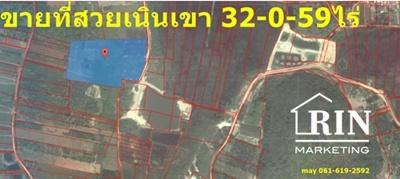 ขายที่ดินเปล่า 32-0- 59ไร่ ผืนสวยไร่สับประรสเนินเขา ปราณบุรี 061-619- 2592 เมย์