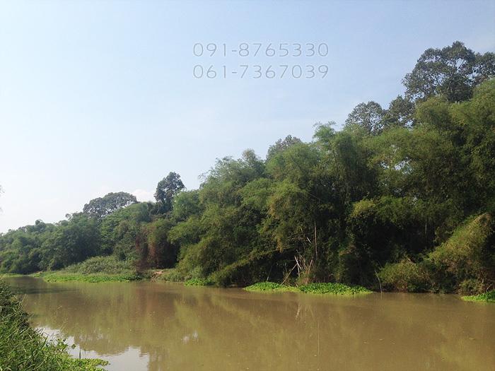 ขายที่ดิน 2ไร่ หันคา ชัยนาท ติดแม่น้ำท่าจีน วิวสวย ทำเลดี เหมาะปลูกบ้าน ทำรีสอร์ท ลดราคาถูกๆ