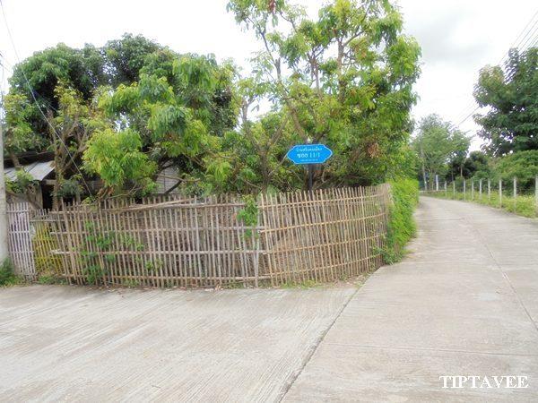 21400 ขายบ้านใกล้พิพิธภัณฑ์พระพิฆเนศ ดอยหล่อ เชียงใหม่ Sale House DoiLo Chiangmai THAILAND