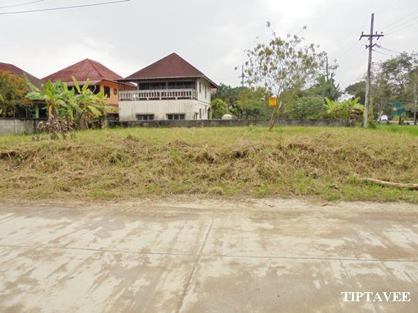 22408 ขายที่ดินกรวิทย์3 สันโป่ง แม่ริม เชียงใหม่ Sale Land, Kornwit3 SanPong Maerim Chiangmai THAILAND
