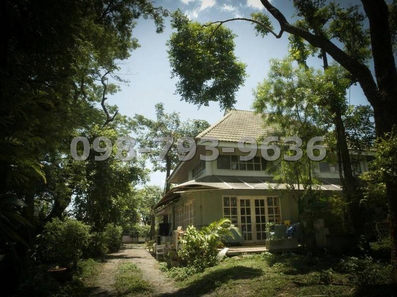 ขายบ้านเดี่ยว  340 ตรว. สะพานซังฮี้ พระราม7 บางพลัด ซอยเพียรธรรม-สมาน นนทบุรี