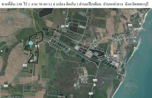 ขายที่ดิน 130 ไร่ 1 งาน 70 ตรว  ตำบลปึกเตียน  อำเภอท่ายาง  จังหวัดเพชรบุรี