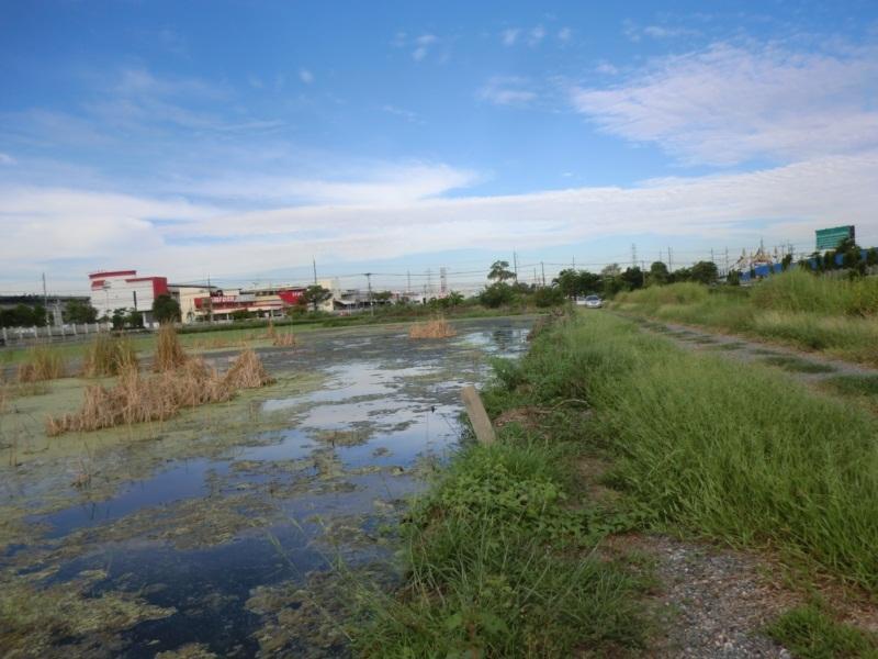 ที่ดิน 3ไร่ ถนน340 บางบัวทอง-สุพรรณบุรี ใกล้ อบต. ไทรใหญ่ อำเภอ ไทรน้อย จังหวัด นนทบุรี