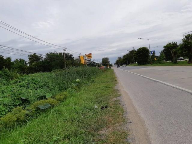 ขายที่ดินสวย 8 ไร่ 3 งาน ติดถนนสุพรรณบุรี-บางบัวทอง นนทบุรี