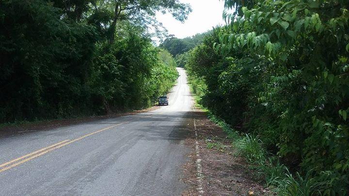 ขายที่ดินถลางในซอยโรงเรียนป่าครองชีพ เนื้อที่ 6 ไร่ ขาย 2 ล้านต่อไร่