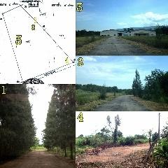 ขายที่ดิน 83 ไร่ บ้านมาบคล้า ต.คลองกิ่ว อ.บ้านบึง จ.ชลบุรี ไร่ละ 2 ล้านบาท