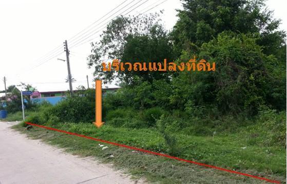 ให้เช่าที่ดิน 1 ไร่ ซอยไร่ชานเมือง อ.บ้านบึง จ.ชลบุรี รูปที่ 3