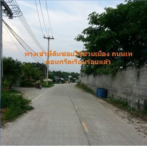 ให้เช่าที่ดิน 1 ไร่ ซอยไร่ชานเมือง อ.บ้านบึง จ.ชลบุรี รูปที่ 5