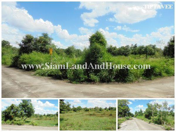 22396 ขายที่ดินเชียงใหม่ ที่ดินบ้านสราญรมย์วิวดอย ยุหว่า สันป่าตอง เชียงใหม่ Land for SALE, Saranrom Viewdoi Village, YuWa, Sanpatong, Chiangmai, THAI