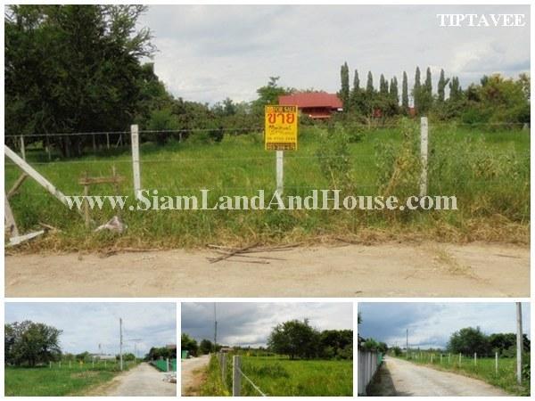 22397 ขายที่ดินเชียงใหม่ ที่ดินใกล้เทศบาลน้ำบ่อหลวง สันป่าตอง เชียงใหม่ /Land for SALE, Near Namboluang Municipal offices, Sapatong, Chiangmai, THAILA