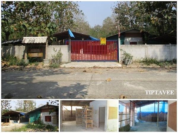 22392 ขายที่ดินเชียงใหม่ ให้เช่าที่ดินพร้อมโรงเรือน หมู่บ้านสราญรมย์วิว บ้านแม สันป่าตอง เชียงใหม่ / Land with Building for SALE-RENT, Saranrom View V