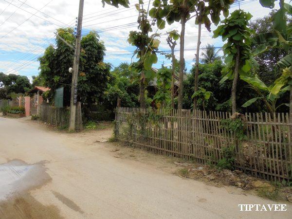 22400 ขายที่ดินเชียงใหม่ ที่ดินใกล้เทศบาลทุ่งปี้ แม่วาง เชียงใหม่ Land for SALE, Near Thungpi Municipal offices, MaeWang, Chiangmai, THAILAND.