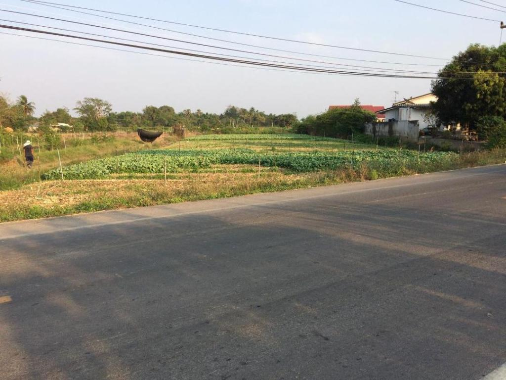 ที่ดิน 6 ไร่เมืองนครปฐม ติดถนนลาดยาง อยู่ห่างจากถนนมอเตอร์เวย์ 2 กิโลเมตร ไร่ละ 1,200,000 บาท (สามารถจัดสรรแบ่งขายได้) คุณนี 099-6084359